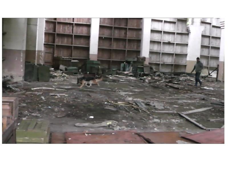 Осенние движения на полигоне ПСС На Юге Украины Dddnon13