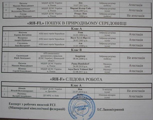 Анализ «тренировочных ПСР, тест MRT»25.10.2013г. Ddnddy11