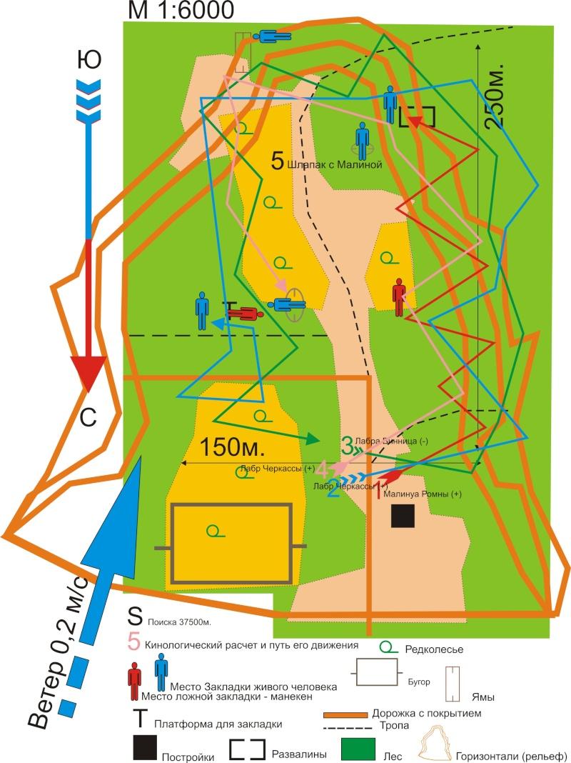 Анализ «тренировочных ПСР, тест MRT»25.10.2013г. Dndudd12