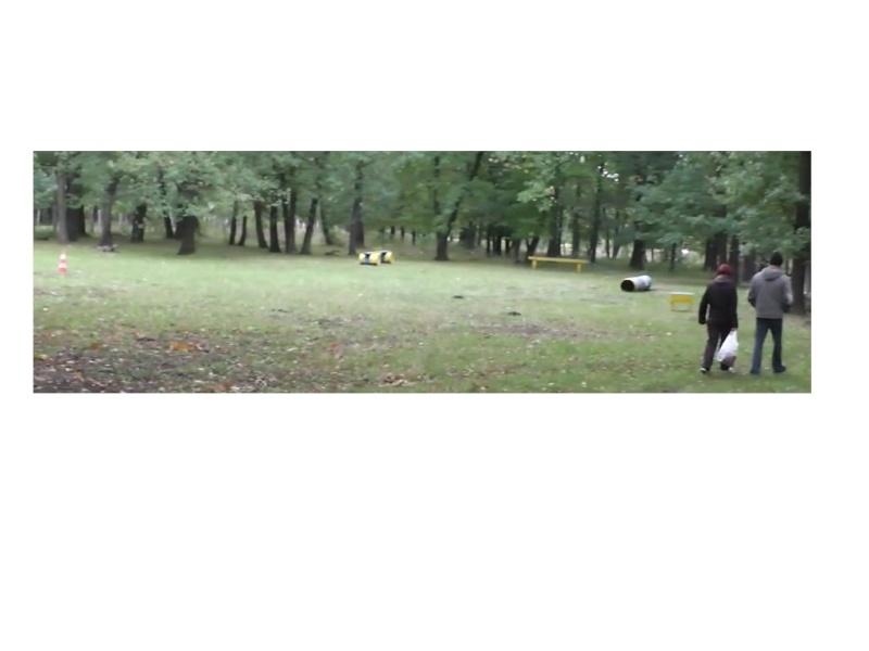 Осенние движения на полигоне ПСС На Юге Украины Dydddn11