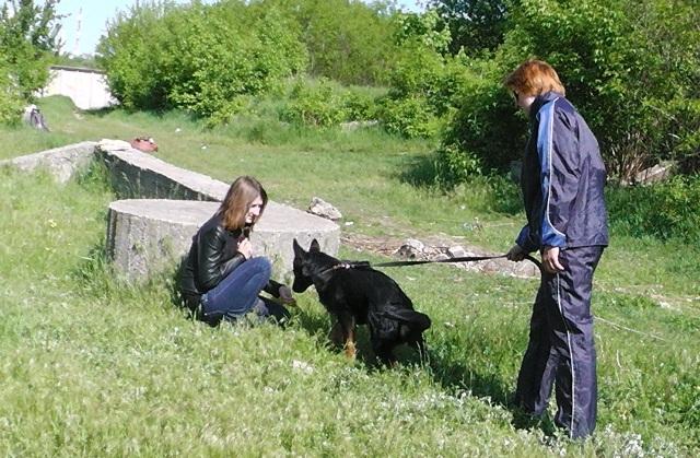 Фотки_7.05.2014_ДЮЦ_волонтеры и ДСНСники S1000017