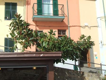 Italie  -  Ligurie, les Cinque Terre - Page 2 Dscf1024