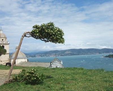 Italie  -  Ligurie, les Cinque Terre Dscf1115