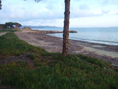 Balade sur le littoral varois Dscf8324