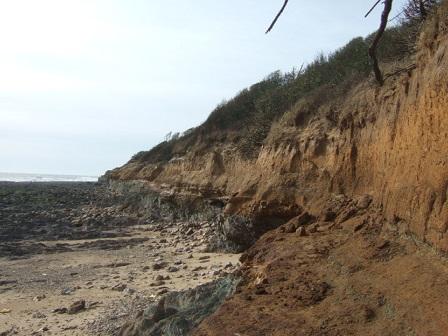 (85) Balade sur le littoral vendéen Dscf8917