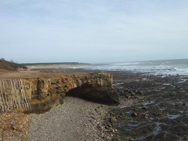 (85) Balade sur le littoral vendéen Dscf8918