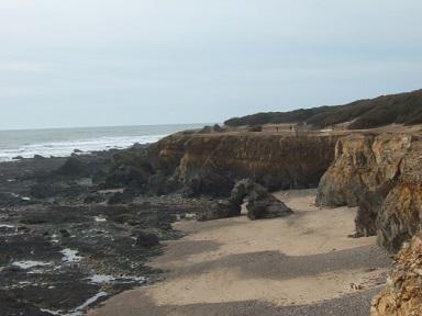 (85) Balade sur le littoral vendéen Dscf9011
