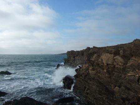 (85) Balade sur le littoral vendéen - Page 2 Dscf9411