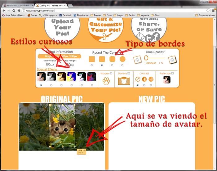 Tutoriales - Cómo hacer tu propio avatar // Cómo alojar imágenes desde el foro A_210
