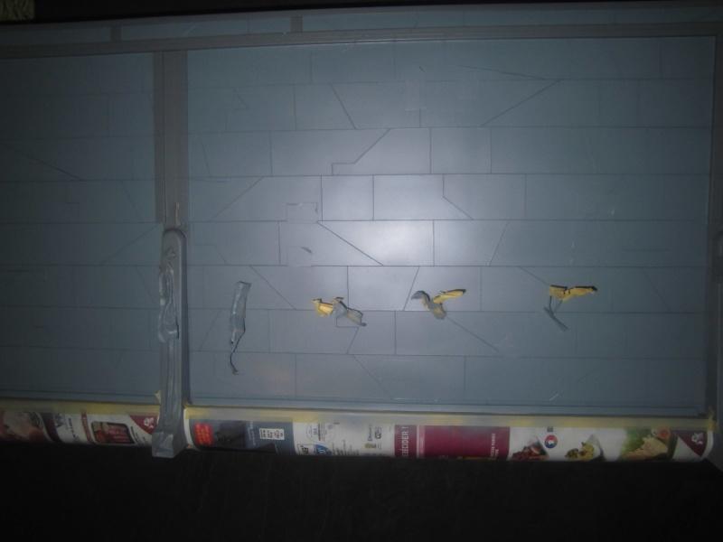 Mur Etoile Noire - Page 3 Cimg3513