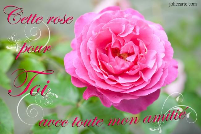POUR NOTRE ROSE Amitie10
