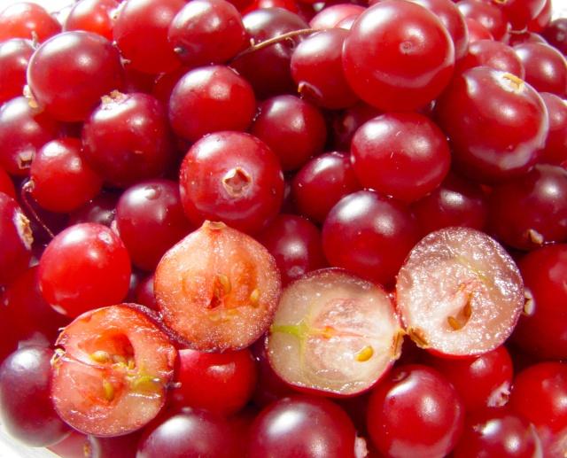 Les superfruits: bien les choisir pour bénéficier de leurs propriétés  Cranbe11
