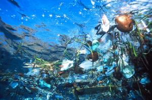 Transformer les déchets plastiques des océans en emballages  Dechet10