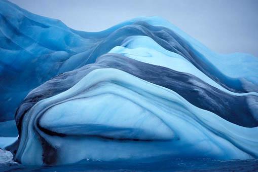 Majesté des Icebergs Iceber15