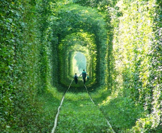 Le Tunnel de l'Amour de Kleven (Ukraine) Le-tun10