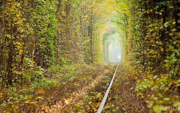Le Tunnel de l'Amour de Kleven (Ukraine) Le-tun12
