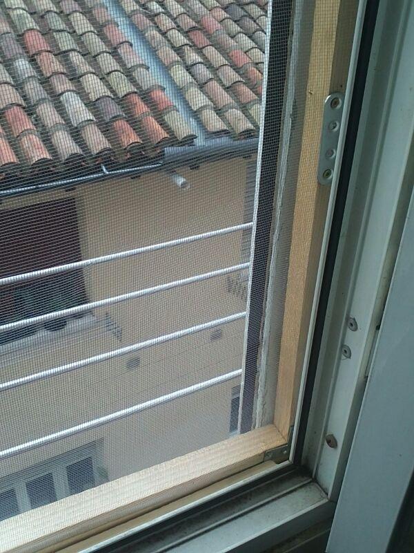 Mosquiteras y redes para las ventanas y cómo proteger a nuestros gatos - Página 9 08610