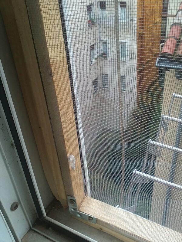 Mosquiteras y redes para las ventanas y cómo proteger a nuestros gatos - Página 9 08711