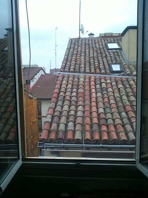 Mosquiteras y redes para las ventanas y cómo proteger a nuestros gatos - Página 9 08812