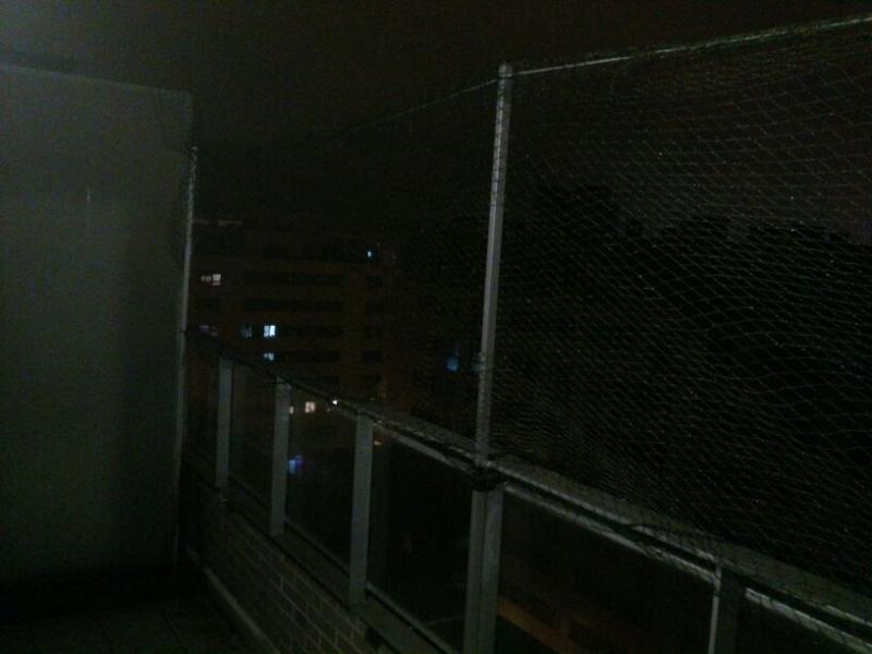 Resumen de ideas para mosquiteras y redes ventanas y balcón para gatos. - Página 2 1210