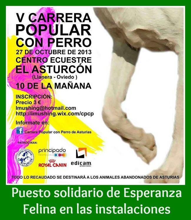 Puesto de Esperanza Felina en la V Carrera Popular con Perro. Llanera (Asturias) Cartel10