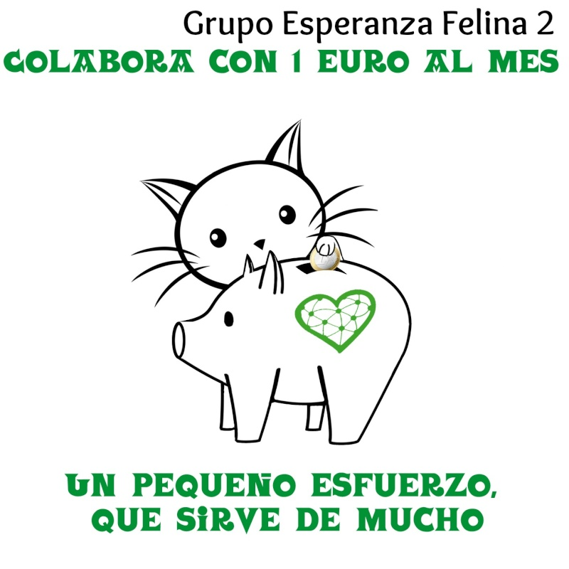 Ya tenemos Teaming Esperanza Felina, únete!!! - Página 4 Espera14