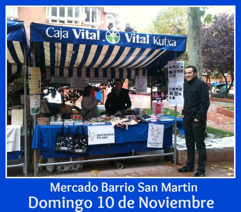 Esperanza Felina en el mercado del Barrio San Martin (Vitoria). 10 de Noviembre de 2013 Img_4810