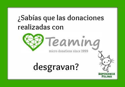 Ya tenemos Teaming Esperanza Felina, únete!!! - Página 5 Teamin10