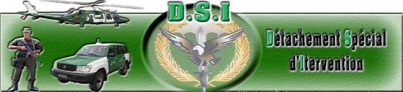 DSI : Détachement Spécial d'Intervention [GN] 11877610