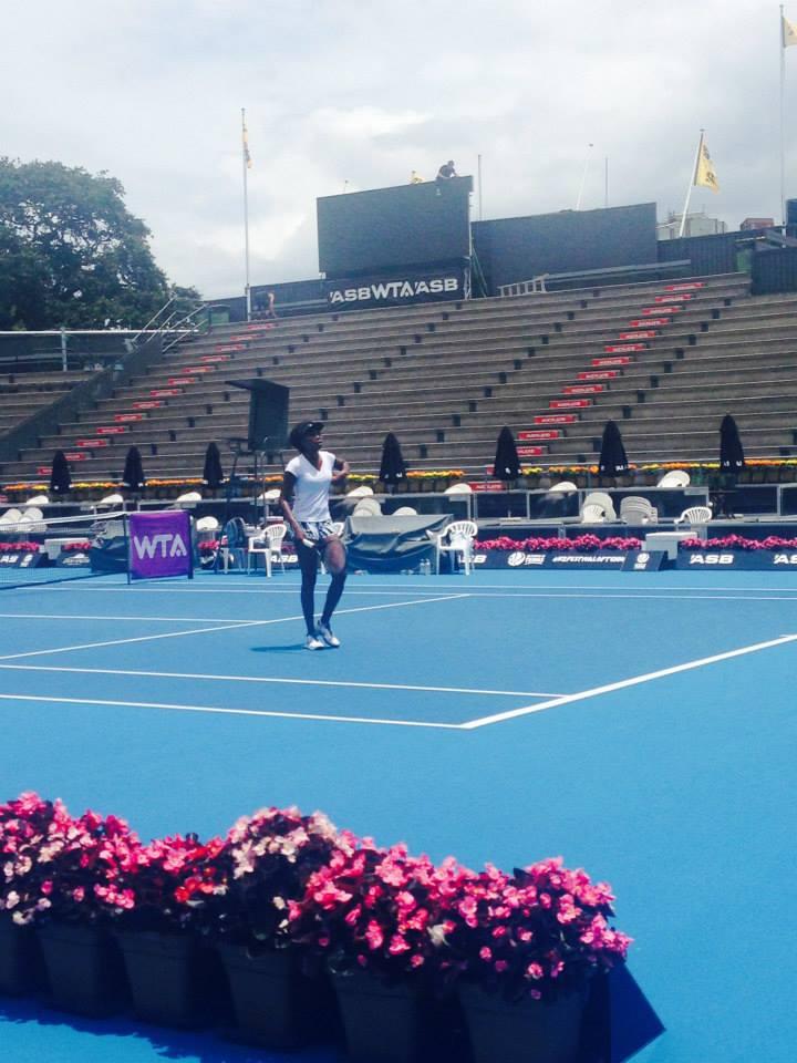 WTA AUCKLAND 2014 : infos, photos et vidéos 15356810