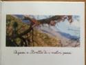 Spassighjata sumerina in l'Altu Nebbiu 10264910