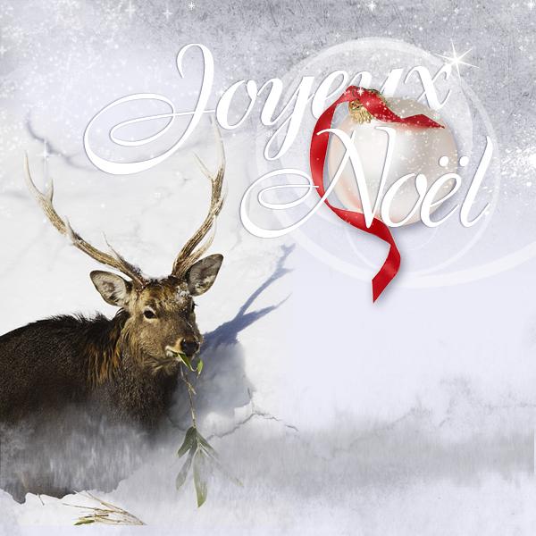 Les voeux de fin d'année Renne_10