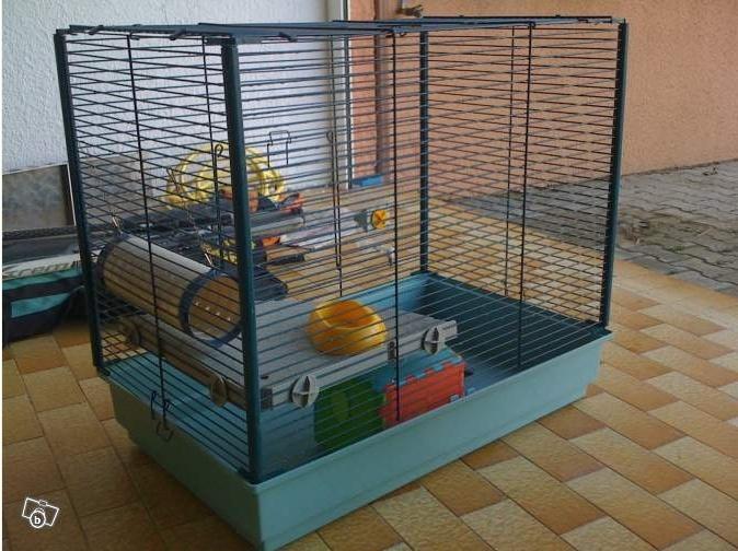 Vend cage super état [AUDE] Image_10
