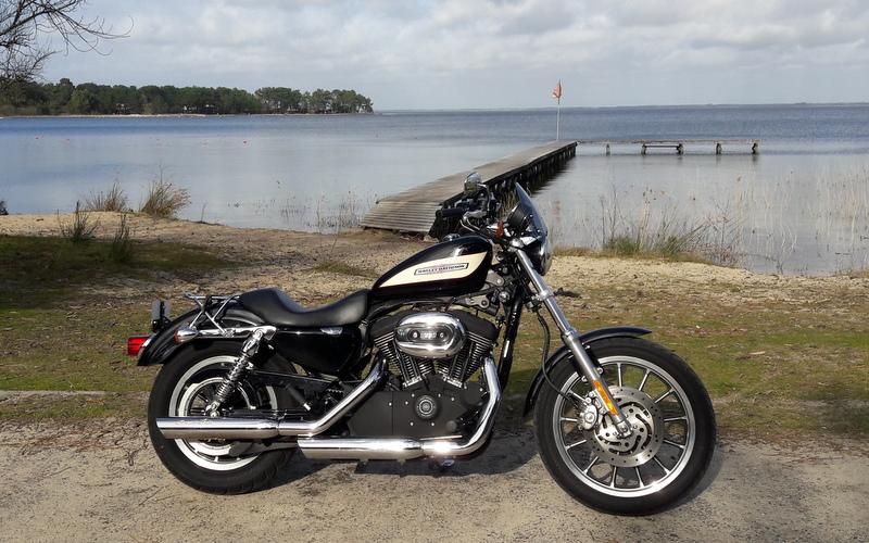 combien sommes nous en 1200 Sportster sur Passion-Harley - Page 37 20190211