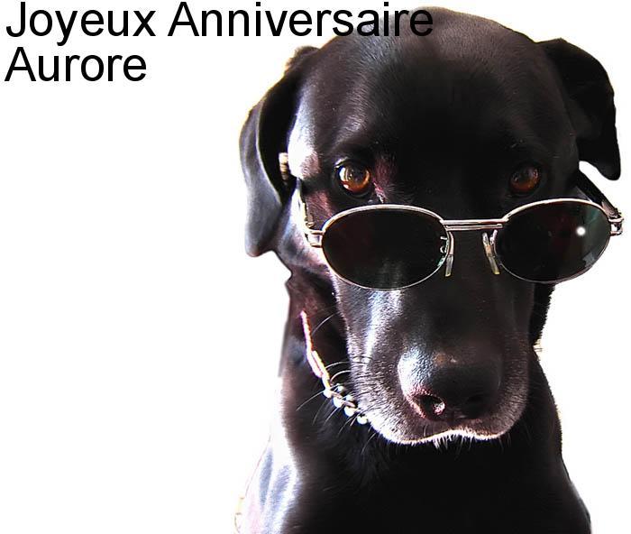 20 décembre 2012 Bon anniversaire Aurore Carte-14