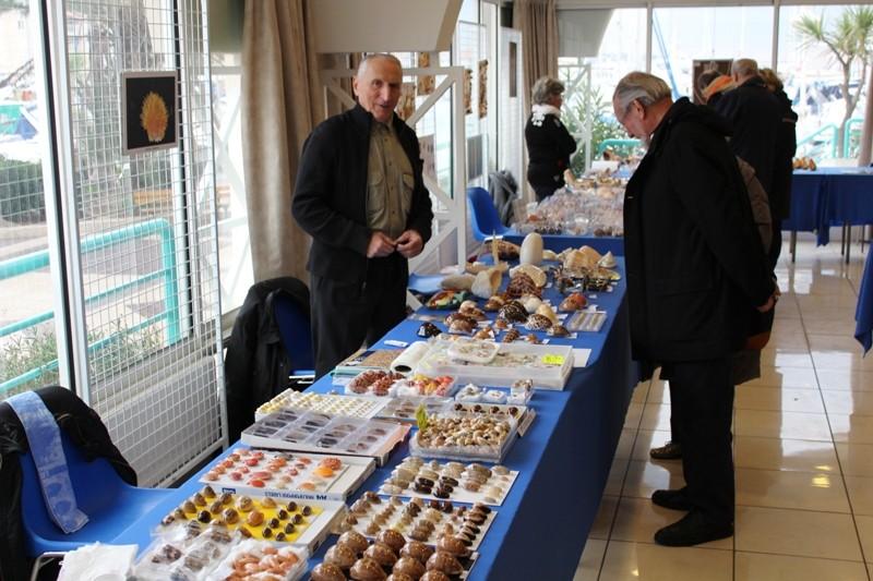 2013 Bourse de Fréjus - 30 novembre & 1 décembre Img_3312
