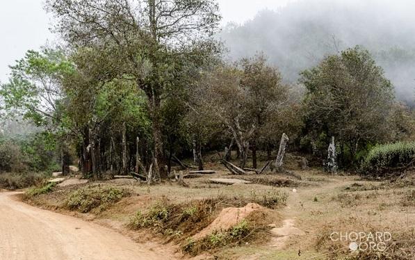 Hintang - Laos - Asie du Sud-Est  Nk7_3010