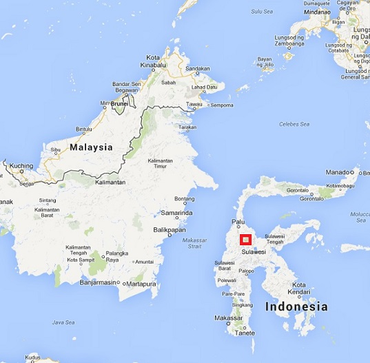 La Vallée de Bada - Indonésie - Asie du Sud Vallae10