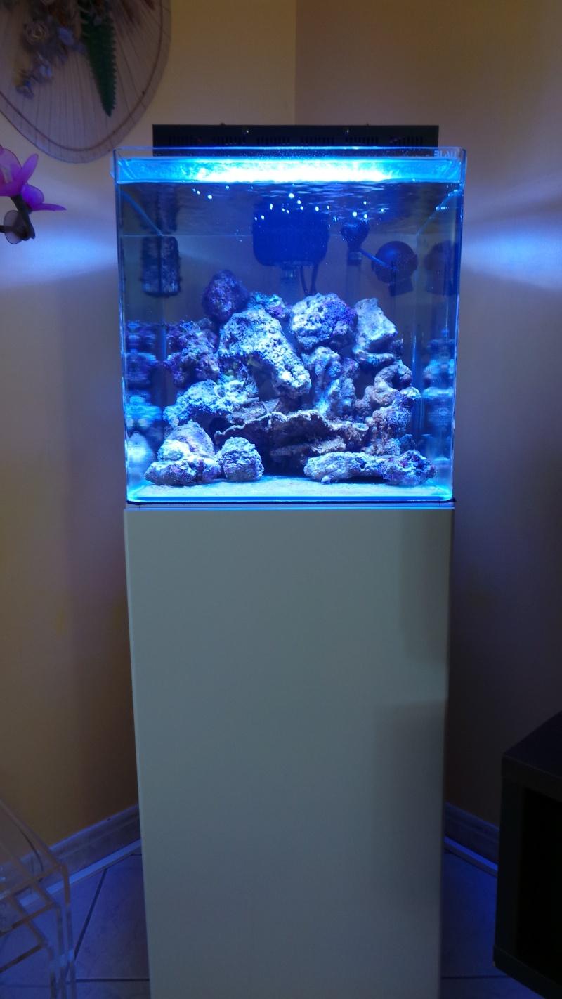 reef nano 20140325