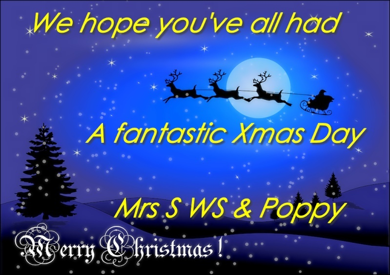 Christmas Pictures/Animations 2013 121