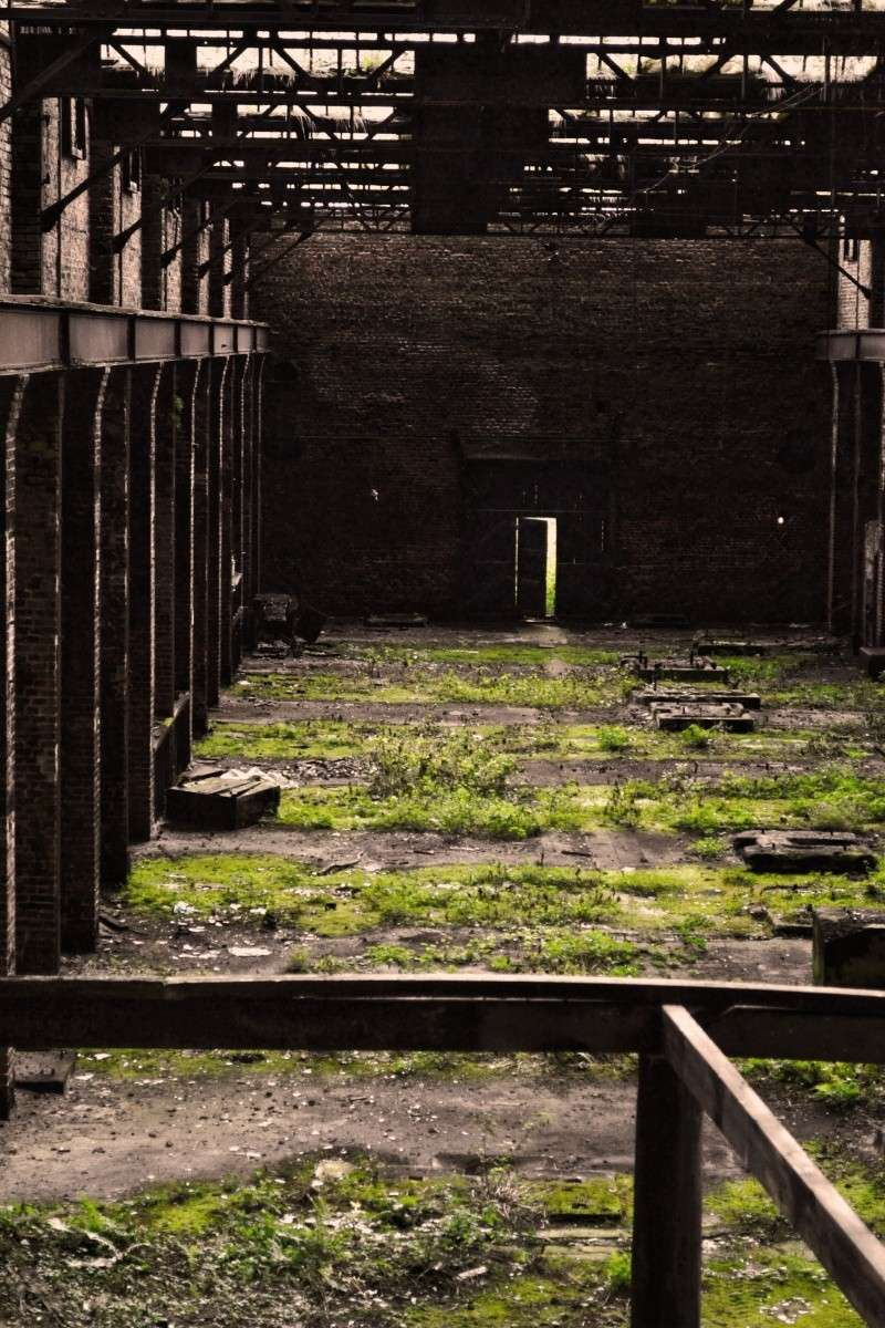 Coming from the grave... Hemi's resurrection Dsc_0717