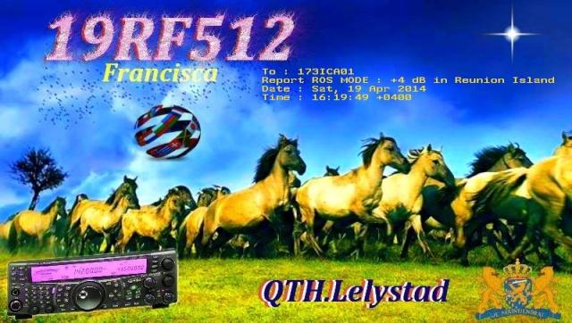 AMATEUR ROS 2 / 4 / 7 / 8 / 16 19_rf_11