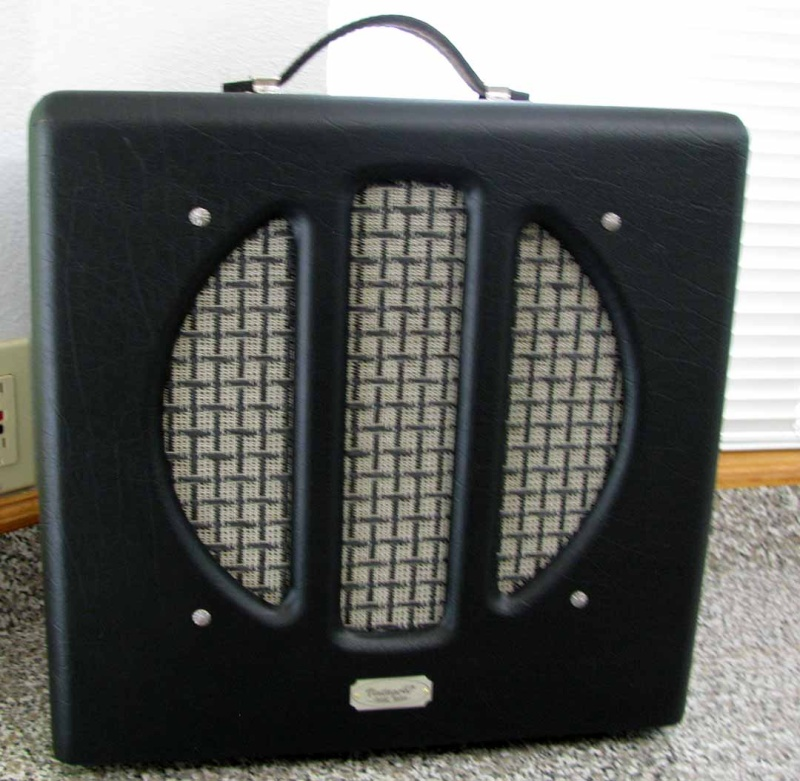 Very cool amp guitar............ - Page 3 Ric-va10