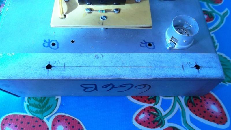 Construction de 3 Bassman Blonde 2(63' 6G6b)et 1(62' 6bj3). - Page 11 Sam_0810