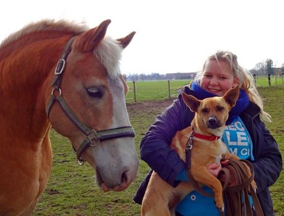 Hunde - und Pferdeverrückt!! Fröhliches Zuhause für kleine, agile Traumhündin gesucht! 814