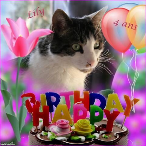 Joyeux Anniversaire Ma Petite Lily Chérie