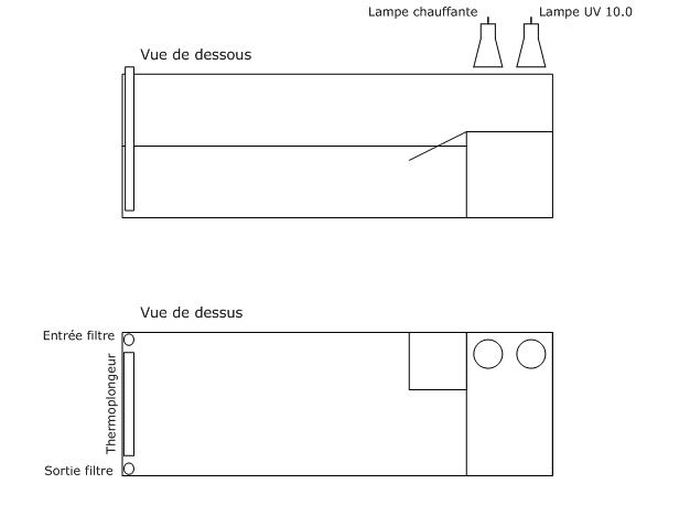 FICHE D'ELEVAGE ET DESCRIPTION : Pelomedusa subrufa Instal12