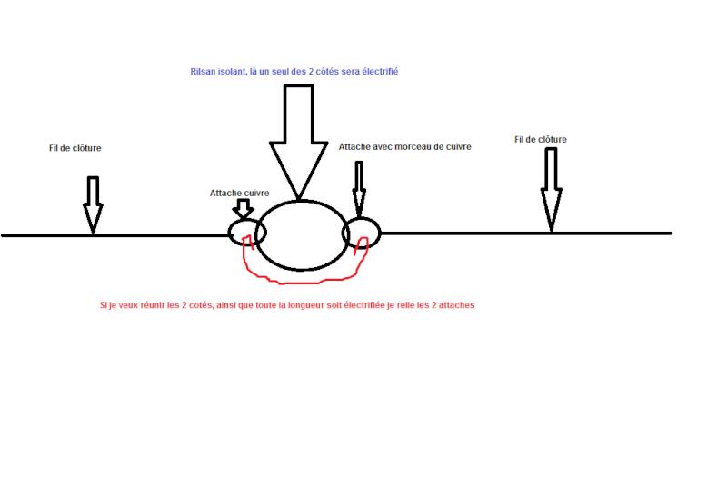 Aménager un terrain en prairie ? - Page 2 Shama_10