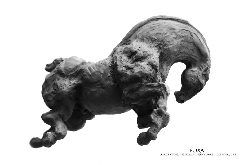 Foxa-Réalisations devant public à Meung sur Loire Dsc_0210