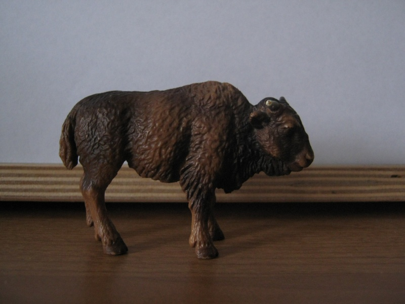My new models of the last weeks - Page 3 Bisonk10